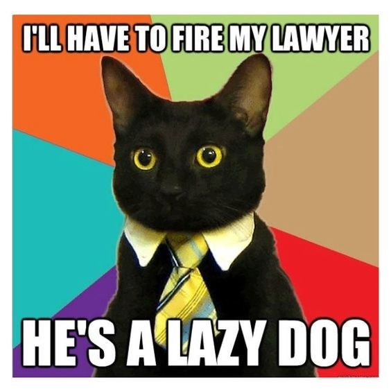 business cat - Cat - OLL HAVE TO FIRE MY LAWYER HE'S A LAZY DOG