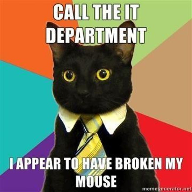business cat - Cat - CALL THE IT DEPARTMENT IAPPEAR TO HAVE BROKEN MY MOUSE memegenerator.net