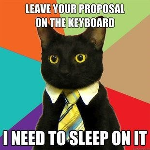 business cat - Cat - LEAVE YOUR PROPOSAL ON THE KEYBOARD INEED TO SLEEP ON IT