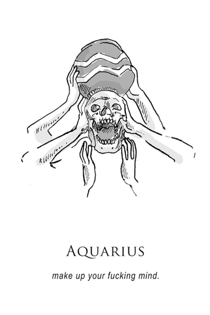 Line art - AQUARIUS make up your fucking mind.