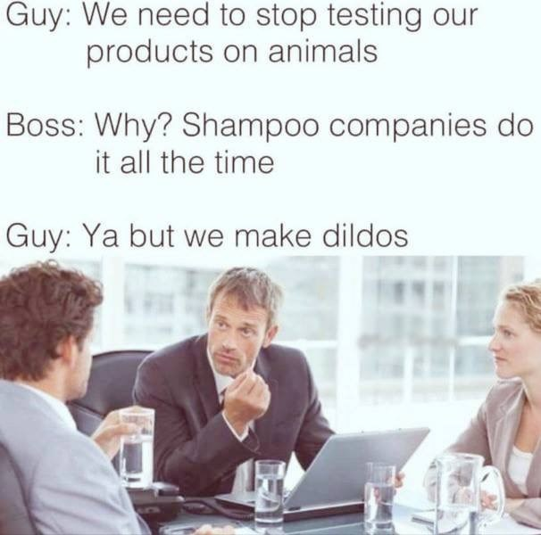 Funny meme about the need to stop testing their products on animals.