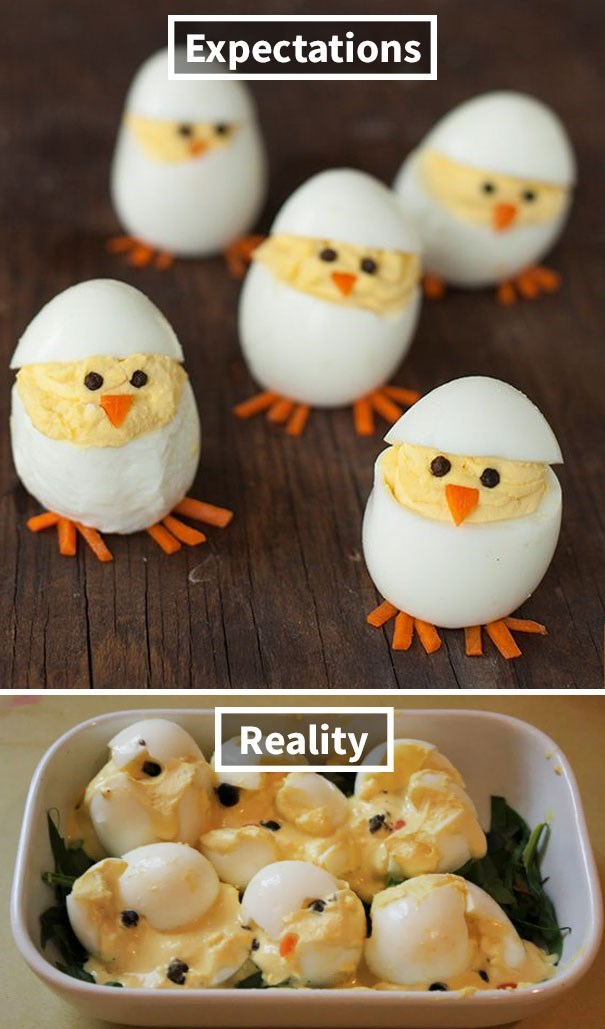 Egg - Expectations Reality