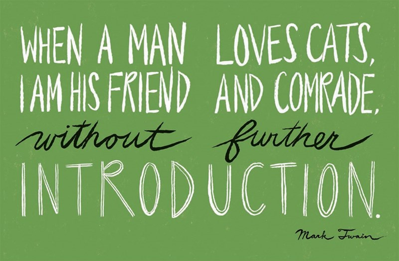 Font - WHEN A MAN LOVES CATS TAM HIS FRIEND AND COMRADE ithout funther INTRODUCTION mark Funin