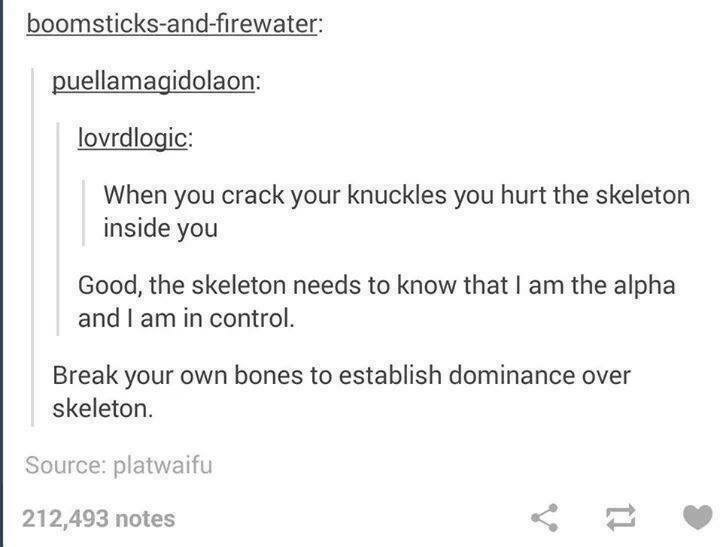 funny tumblr post When you crack your knuckles you hurt the skeleton inside you Good, the skeleton needs to know that I am the alpha and I am in control Break your own bones to establish dominance over skeleton. Source: platwaifu 212,493 notes