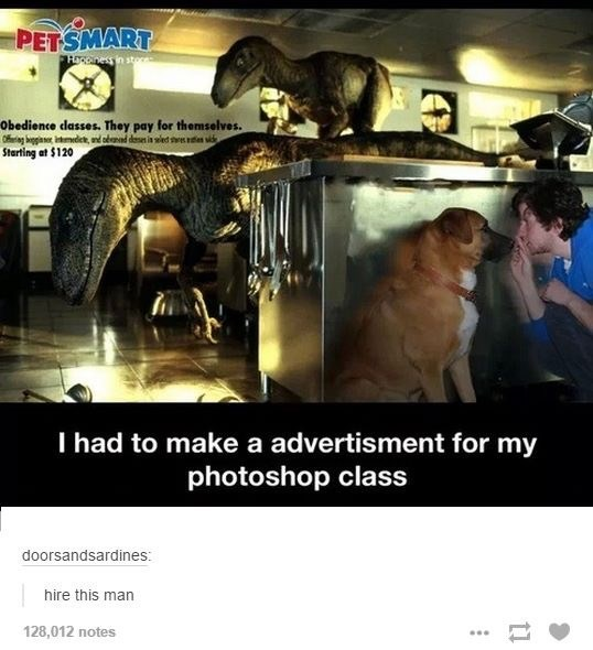 funny tumblr post I had to make a advertisment for my photoshop class
