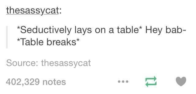 funny tumblr post Seductively lays on a table* Hey bab- Table breaks* Source: thesassycat 402,329 notes