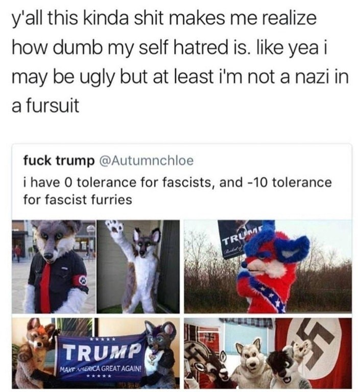 Funny meme about how nazis in furry suits should make us all feel better about ourselves.
