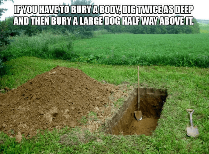 Soil - IFYOU HAVE TO BURY A BODY,DIG TWICEASDEEP AND THEN BURY A LARGE DOG HALF WAY ABOVE IT