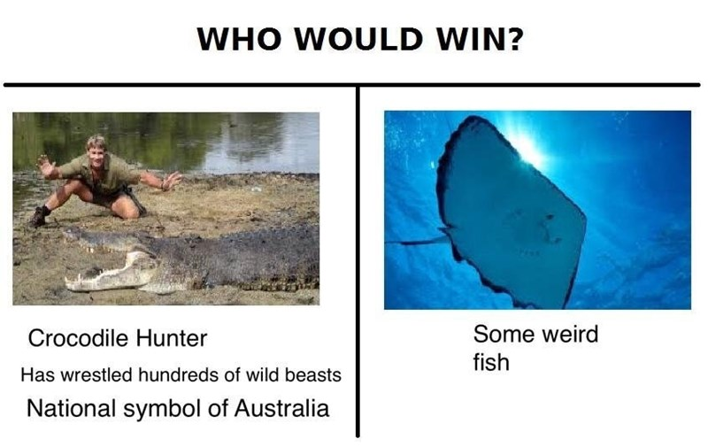 dank meme - Organism - WHO WOULD WIN? Some weird Crocodile Hunter fish Has wrestled hundreds of wild beasts National symbol of Australia