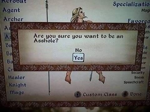 Funny meme about game asking if you're sure you want to be an asshole.