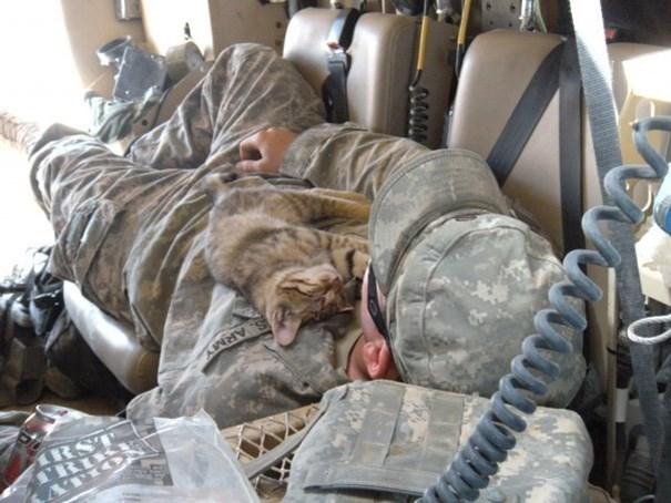 Soldier - ARMY RST CRIK ATIO