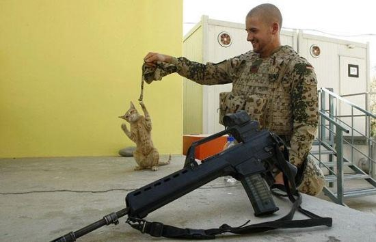 Gun - iscaSTRE