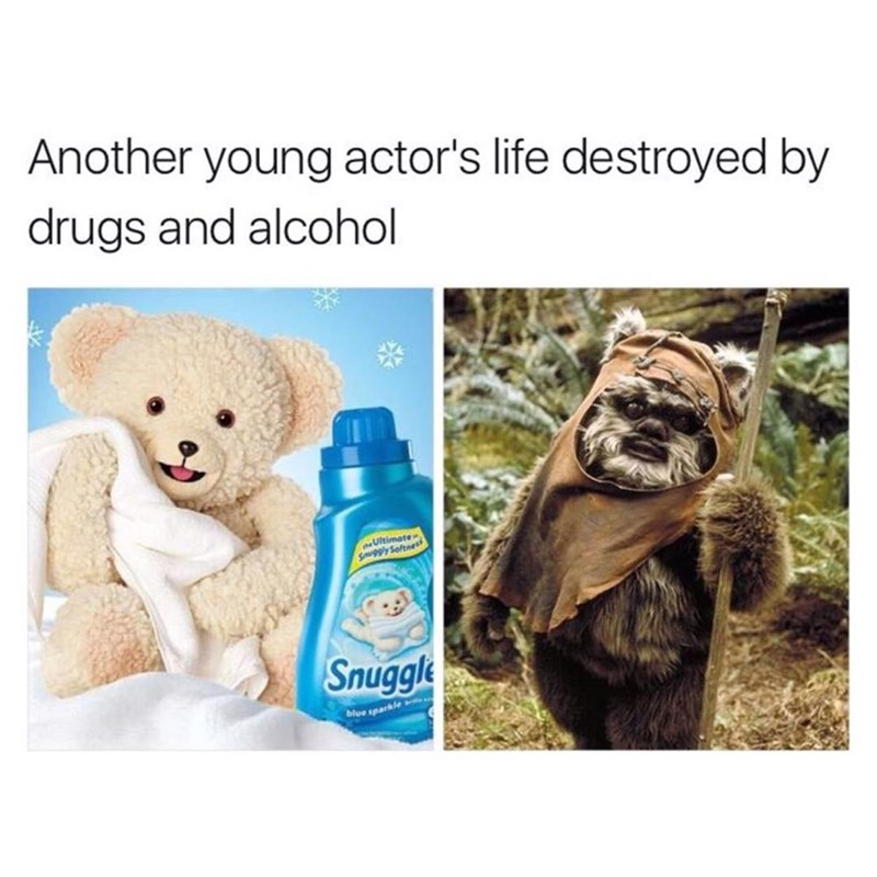 Funny meme about snuggles being destroyed by drugs and alcohol, photo of ewok.