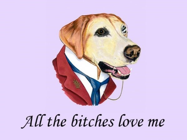 Dog - All the bitches love me