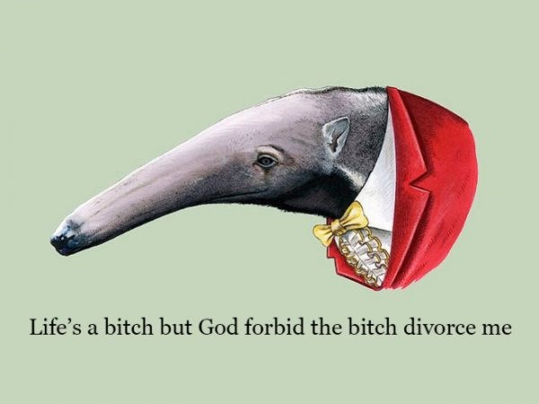 Beak - Life's a bitch but God forbid the bitch divorce me