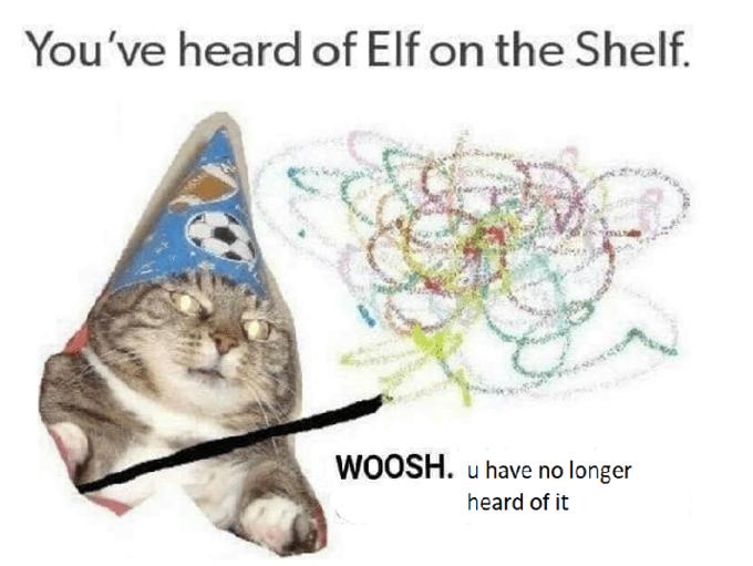 Text - You've heard of Elf on the Shelf. WOOSH. u have no longer heard of it