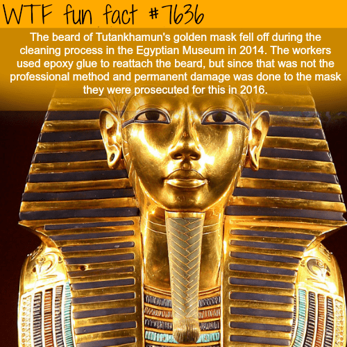 Metal - WTF fun fact # T30 The beard of Tutankhamun's golden mask fell off during the cleaning process in the Egyptian Museum in 2014. The workers used epoxy glue to reattach the beard, but since that was not the professional method and permanent damage was done to the mask they were prosecuted for this in 2016.