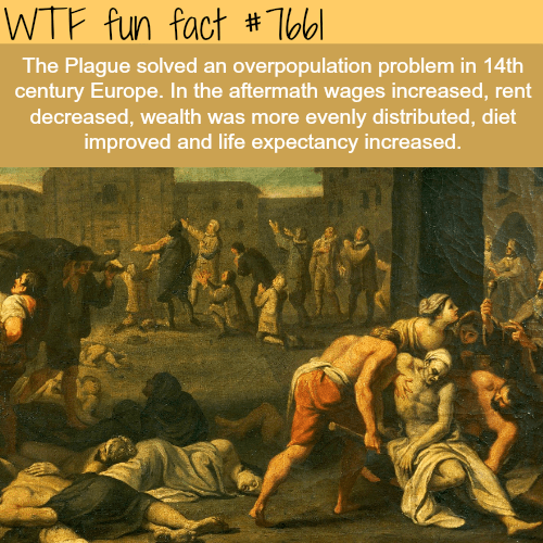 Album cover - WTF fun fact #Tbbl The Plague solved an overpopulation problem in 14th century Europe. In the aftermath wages increased, rent decreased, wealth was more evenly distributed, diet improved and life expectancy increased.