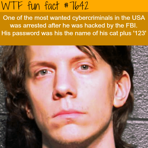 Face - WTF fun fact #T642 One of the most wanted cybercriminals in the USA was arrested after he was hacked by the FBI. His password was his the name of his cat plus '123'