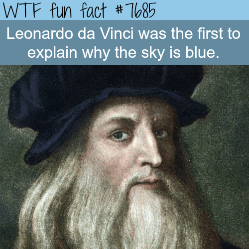 Hair - WTF fun fact #T685 Leonardo da Vinci was the first to explain why the sky is blue.