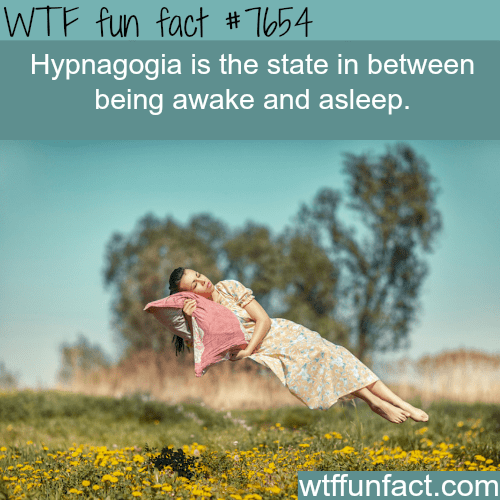 People in nature - WTF fun fact #T54 Hypnagogia is the state in between being awake and asleep. wtffunfact.com