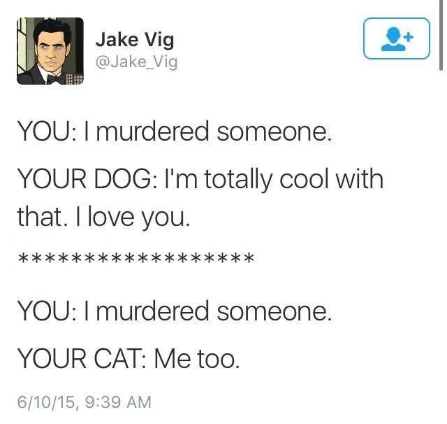 cat meme - Text - Jake Vig @Jake_Vig YOU: I murdered someone. YOUR DOG: I'm totally cool with that. I love you ***************** YOU: Imurdered someone. YOUR CAT: Me too. 6/10/15, 9:39 AM