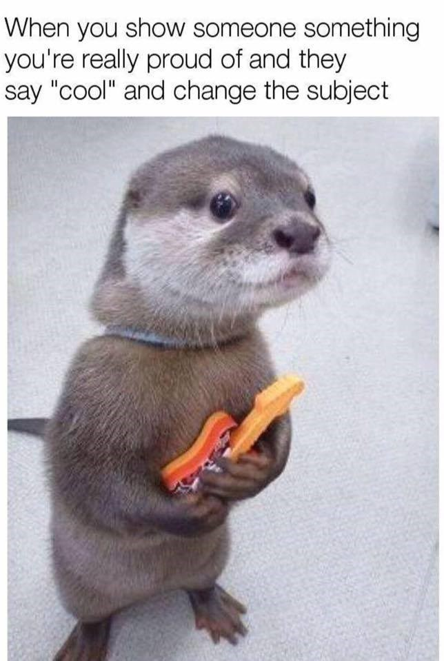 cute bashful otter in meme about showing something you are really proud of and they say cool and change the subject
