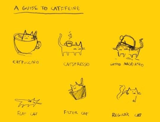Text - A GUIDE TO ATFFEINE GATTO MACHIATTO CATPUCCINO CATSPRESSO FIUTER CAT REGULAR CAT FLAT CAT