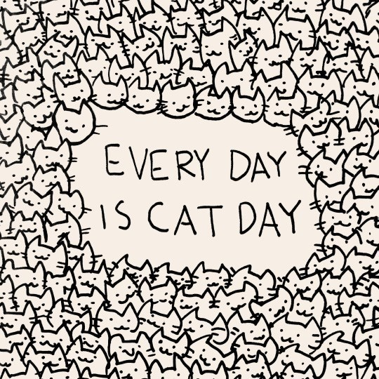 Text - EVERY DAY IS CAT DAY