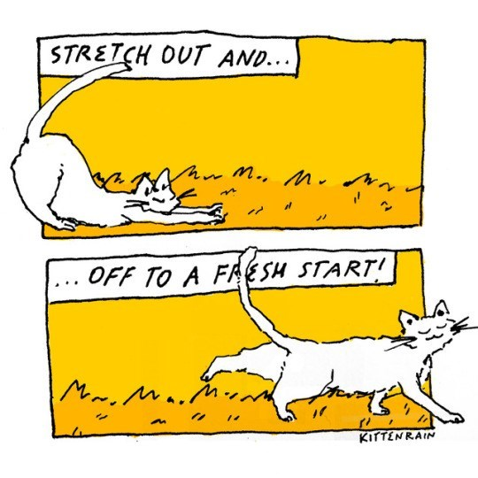 Yellow - STRETCH OUT AND. OFF TO A FRSH START! KITTENRAIN