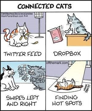 Cartoon - CONNECTED CATS Pare by UivesalUCiek MarkParis@aol.com -10 DROPBOX TWITTER FEED offthemark.com FINDING HOT SPOTS SWIPES LEFT AND RIGHT 14
