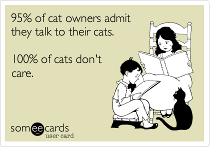 Text - 95% of cat owners admit they talk to their cats. 100% of cats don't care. someecards user card