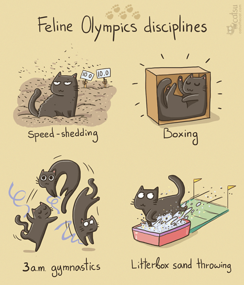 Text - Feline Olympics disciplines 10.0 10 0 Doxing Speed-shedding ell Litterbox sand throwing 9ymnostices 3a.m catsu catsuthecat.com