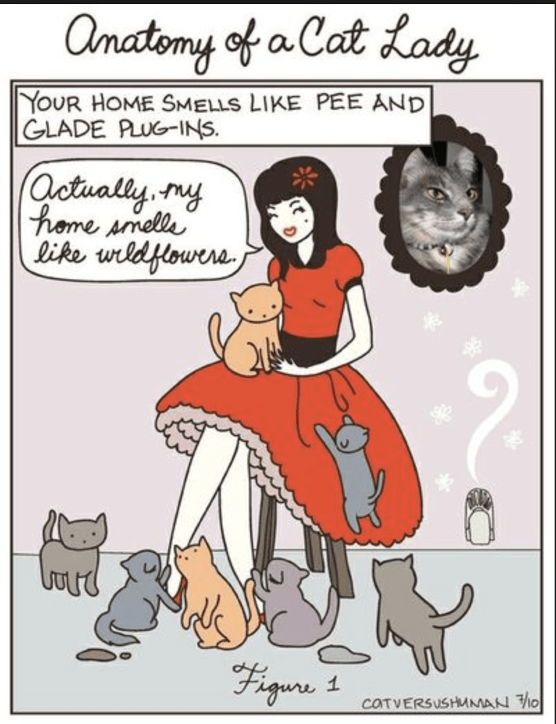 Cartoon - anatomy of a Cat Lady YOUR HOME SMELLS LIKE PEE AND GLADE PLUG-INS (Octually ruy Phome smelle like wldflouere Fiqune 1 COTVERSUSHMMAN O