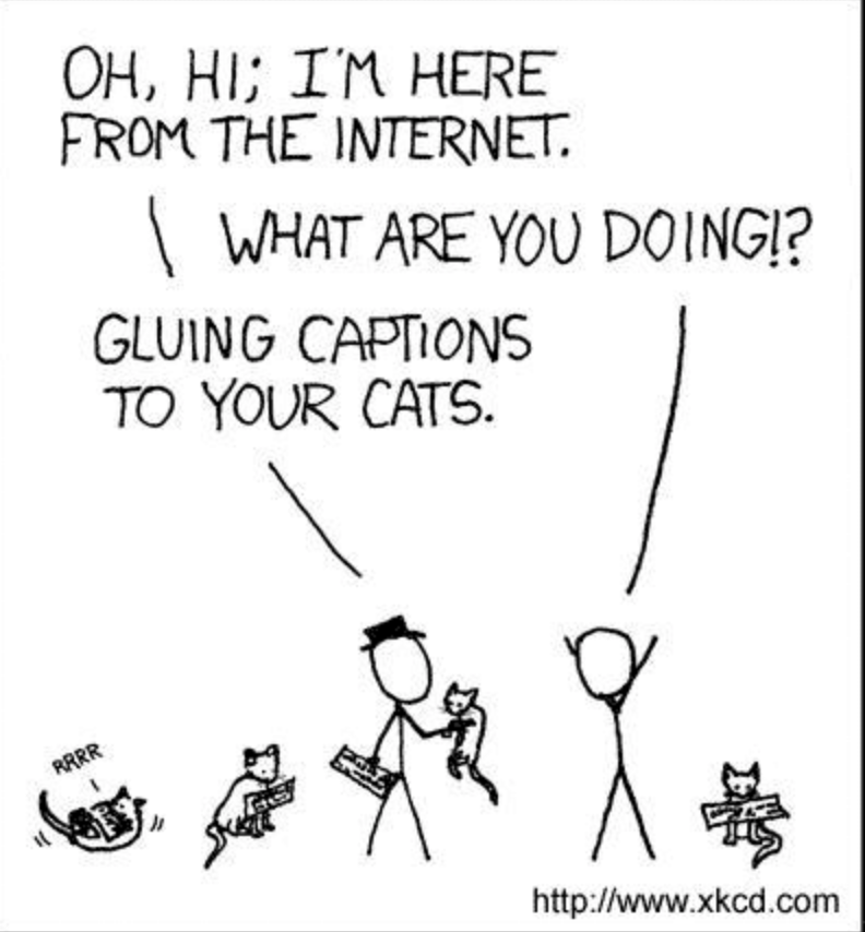 Text - OH, HI; IM HERE FROM THE INTERNET WHAT ARE YOU DOING!? GLUING CAPTIONS TO YOUR CATS RRRR http://www.xkcd.com
