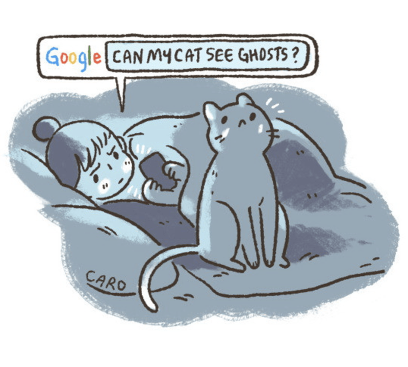 Cartoon - Google CANMYCAT SEE GHOSTS? CARO