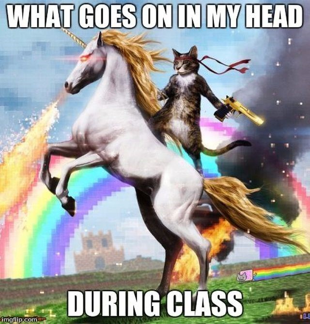 meme of what goes on in your head during class, and it is a crime fighting cat riding a unicorn