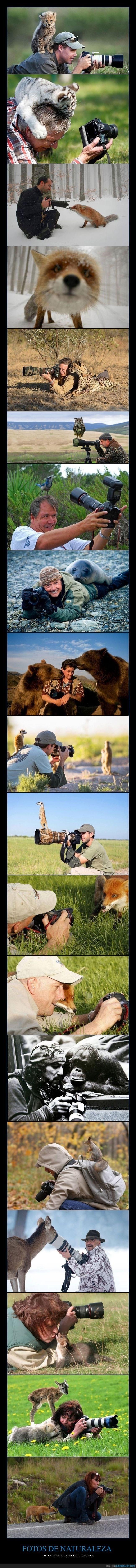 lista de fotografos acompanados por sus objetivos