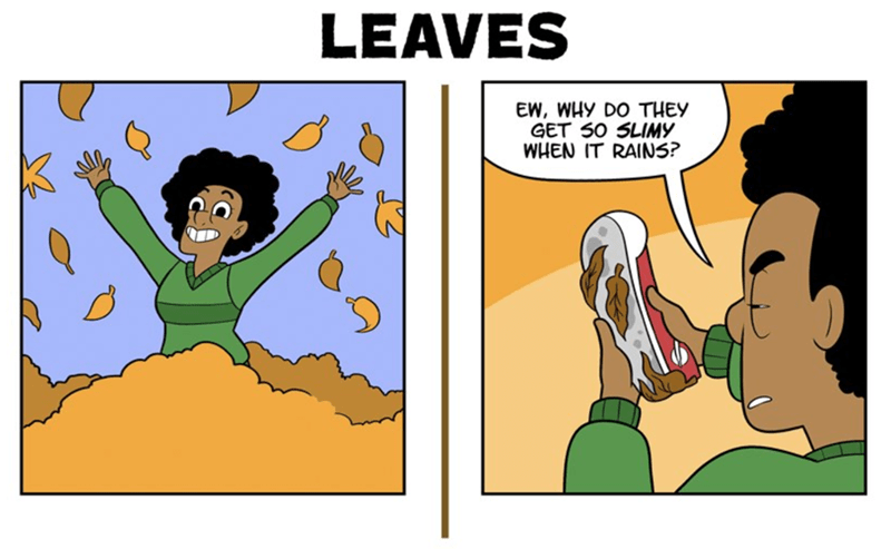 webcomics - Cartoon - LEAVES EW, WHY DO THEY GET S0 SLIMY WHEN IT RAINS?