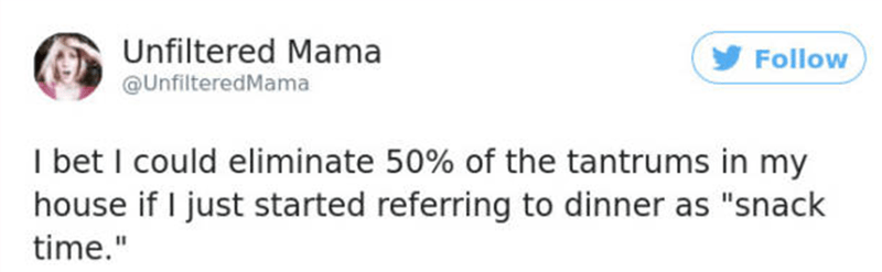 """Text - Unfiltered Mama Follow @UnfilteredMama I bet I could eliminate 50% of the tantrums in my house if I just started referring to dinner as """"snack time."""""""