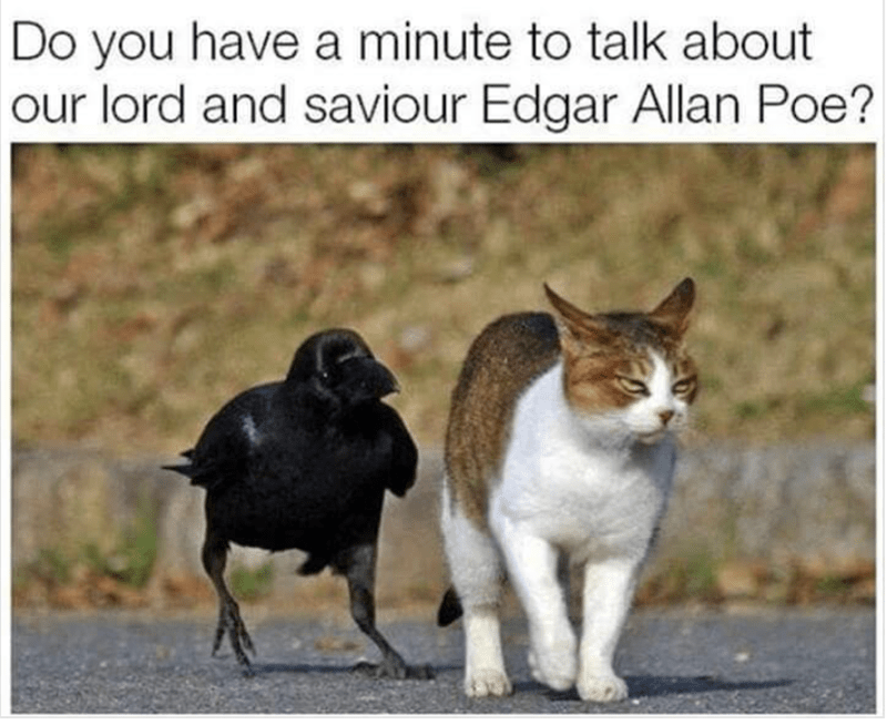 funny cat meme talking to a raven who won't shut up about Edgar Allen Poe