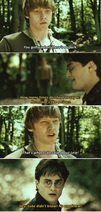 Tree - You gotto admit there's aspark. How many times do Ihave to say it? Hermione's like asisten. That's what Luke said about Leia! Hey, Luke didn't know! No one knew!