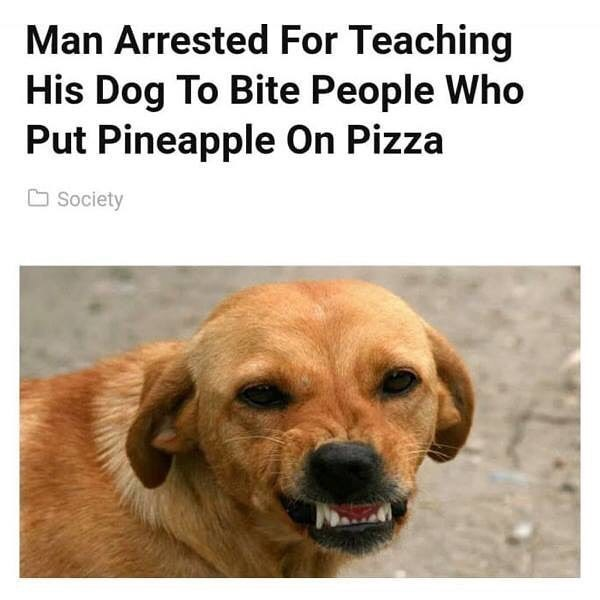 Funny meme about a man who trained his dog to bite people who put pineapple on pizza.