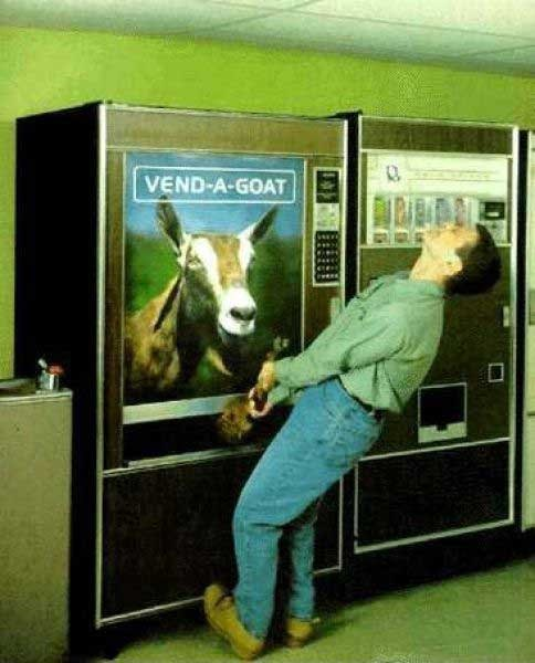 goat meme with picture of a vending machine of goats