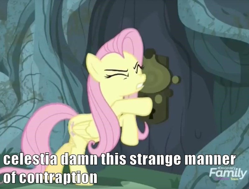 a health of information screencap fluttershy - 9078608640