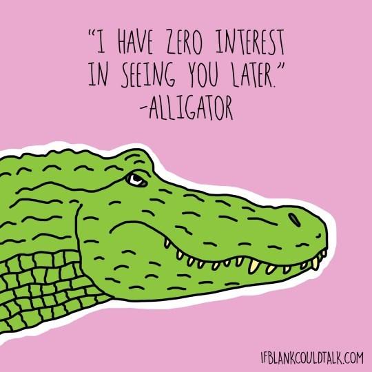 "Alligator - ""I HAVE ZERO INTEREST IN SEEING YOU LATER ""M ALLIGATOR IFBLANKCOULDTALK.COM"
