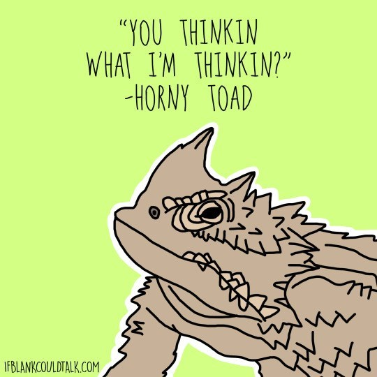 "Text - ""YOU THINKIN WHAT I'M THINKIN?"" HORNY TOAD IFBLANKCOULDTALK.COM"