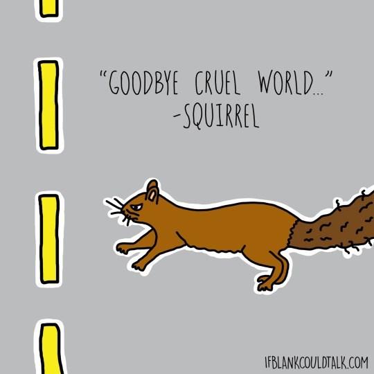 "Cartoon - ""GOODBYE CRUEL WORLD -SQUIRREL IFBLANKCOULDTALK.COM"