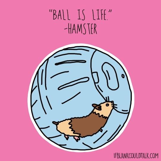 """Cartoon - """"BALL IS LIFE"""" HAMSTER IFBLANKCOULDTALK.COM"""