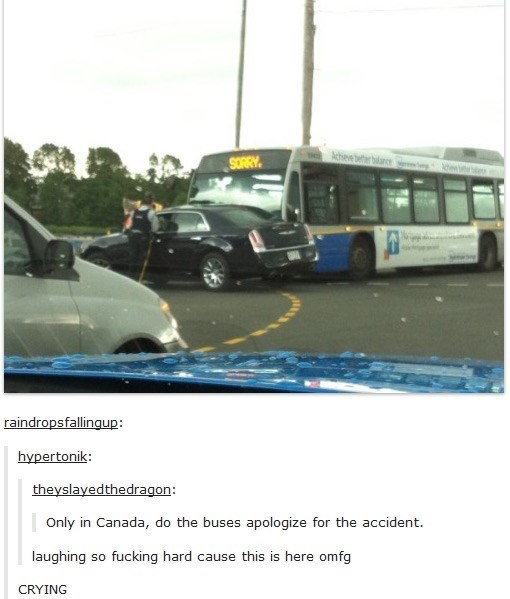 Transport - Achen r bance SORRY raindropsfallingup: hypertonik: theyslayedthedragon: Only in Canada, do the buses apologize for the accident laughing fucking hard cause this is here omfg So CRYING